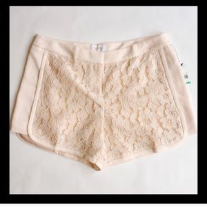 LAUNDRY by SHELLi SEGAL Lace Shorts NWOT SZ 8
